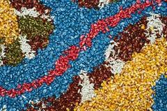 di fondo colorato Multi del seme del mais del cereale Immagine Stock