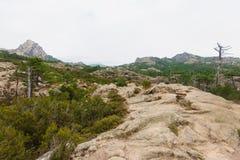 Di Ghjaddu di Cascade de Piscia Immagine Stock
