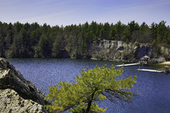 Di grande alberi, laghi e montagne all'aperto - Fotografia Stock