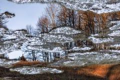 Di lago ripieno di pianta innevato della montagna nella foresta della montagna di Caucaso di autunno al tramonto Bello paesaggio  fotografia stock