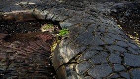 Di lava del giacimento del mosaico della superficie catena vicino della strada dei crateri Immagine Stock