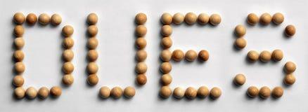 ` Di legno dei debiti del ` di arte di parola della puntina Fotografia Stock Libera da Diritti