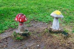 Di legno dei funghi Immagine Stock Libera da Diritti