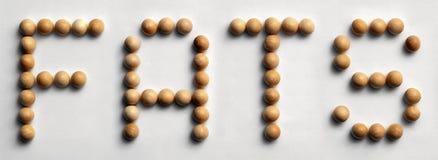 ` Di legno dei grassi del ` di arte di parola della puntina fotografia stock libera da diritti