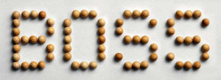 ` Di legno del capo del ` di arte di parola della puntina Fotografie Stock Libere da Diritti