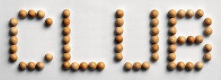 ` Di legno del club del ` di arte di parola della puntina immagine stock libera da diritti