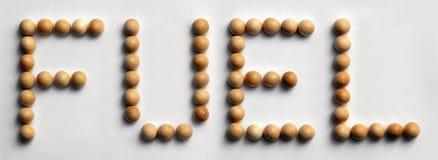 ` Di legno del combustibile del ` di arte di parola della puntina Fotografie Stock Libere da Diritti