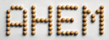` Di legno del ` di arte di parola della puntina Ahem fotografie stock libere da diritti