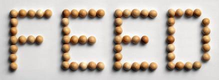 ` Di legno dell'alimentazione del ` di arte di parola della puntina Fotografia Stock