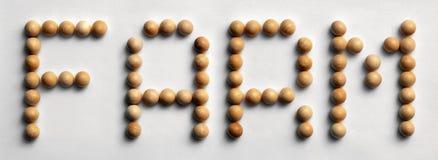 ` Di legno dell'azienda agricola del ` di arte di parola della puntina fotografie stock