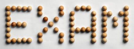 ` Di legno dell'esame del ` di arte di parola della puntina Immagine Stock Libera da Diritti