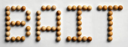 ` Di legno dell'esca del ` di arte di parola della puntina Fotografia Stock Libera da Diritti