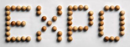 ` Di legno dell'Expo del ` di arte di parola della puntina Fotografia Stock Libera da Diritti
