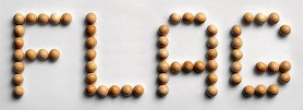 ` Di legno della bandiera del ` di arte di parola della puntina Immagini Stock Libere da Diritti