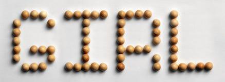 ` Di legno della ragazza del ` di arte di parola della puntina Fotografia Stock Libera da Diritti