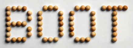 ` Di legno dello stivale del ` di arte di parola della puntina Fotografia Stock Libera da Diritti