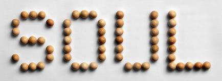 ` Di legno di anima del ` di arte di parola della puntina Fotografia Stock Libera da Diritti
