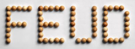 ` Di legno di contesa del ` di arte di parola della puntina Fotografia Stock Libera da Diritti