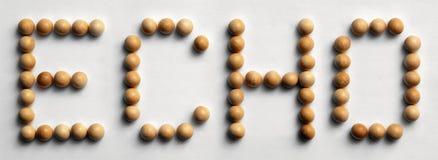 ` Di legno di eco del ` di arte di parola della puntina immagine stock libera da diritti