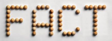 ` Di legno di fatto del ` di arte di parola della puntina Fotografia Stock Libera da Diritti