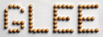 ` Di legno di gioia del ` di arte di parola della puntina Fotografia Stock Libera da Diritti