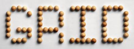 ` Di legno di griglia del ` di arte di parola della puntina Immagini Stock Libere da Diritti