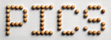 ` Di legno di Pics del ` di arte di parola della puntina immagini stock libere da diritti