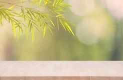 Di legno materiale vuoto di legno con le foglie di bambù verdi su bok verde Immagine Stock Libera da Diritti