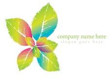 di logo tropicale colorato Muti della foglia Immagini Stock