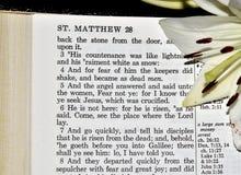 28:5 di Matthew Immagini Stock Libere da Diritti