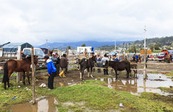 Di mattina, mercato di Saquisili a Quito Immagine Stock