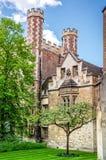 Di melo di Newton alla Trinity College, Cambridge Fotografia Stock Libera da Diritti