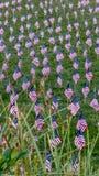 9/11 di memoriale Fotografia Stock
