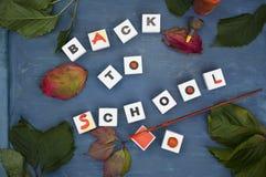 Di nuovo ai cubi della scuola Fotografie Stock
