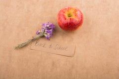 Di nuovo all'iscrizione della scuola con la mela ed il fiore Immagini Stock Libere da Diritti