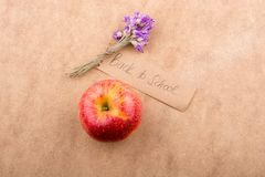 Di nuovo all'iscrizione della scuola con la mela ed il fiore Immagini Stock