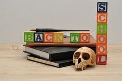 Di nuovo alla scuola con una pila di libri, di penna stilografica e di cranio della scimmia Immagini Stock Libere da Diritti