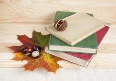 Di nuovo libri di autunno dell'istituto universitario ai vecchi Fotografie Stock Libere da Diritti