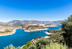 Di olivo intorno al lago Iznajar in Andalusia Fotografie Stock