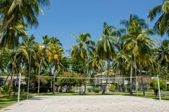 Di pallavolo campo da giuoco all'aperto all'isola tropicale Immagini Stock Libere da Diritti