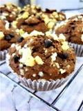 Di pepita di cioccolato del muffin Fotografie Stock