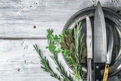 Di piastra metallica con i coltelli e le erbe differenti sulla tavola bianca Fotografia Stock Libera da Diritti