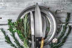 Di piastra metallica con i coltelli e le erbe differenti sulla vista bianca del piano d'appoggio Fotografia Stock Libera da Diritti