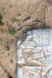 Di pietre rotte in sabbia con le piante Immagine Stock