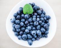 Di recente alimento dell'antiossidante della frutta del mirtillo fotografie stock libere da diritti