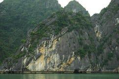 di rocce coperte d'albero che aumentano diritto dal mare, con una piccola caverna alla loro base Fotografie Stock Libere da Diritti