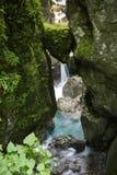 Di roccia incuneato capo- famoso del ` s dell'orso in bello tolmin si rimpinza di nel parco nazionale del triglav, Slovenia fotografie stock libere da diritti
