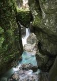 Di roccia incuneato capo- famoso del ` s dell'orso in bello tolmin si rimpinza di nel parco nazionale del triglav, Slovenia immagine stock libera da diritti