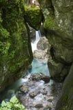 Di roccia incuneato capo- famoso del ` s dell'orso in bello tolmin si rimpinza di nel parco nazionale del triglav, Slovenia fotografia stock