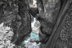 Di roccia incuneato capo- famoso del ` s dell'orso in bello tolmin si rimpinza di nel parco nazionale del triglav, Slovenia immagini stock libere da diritti